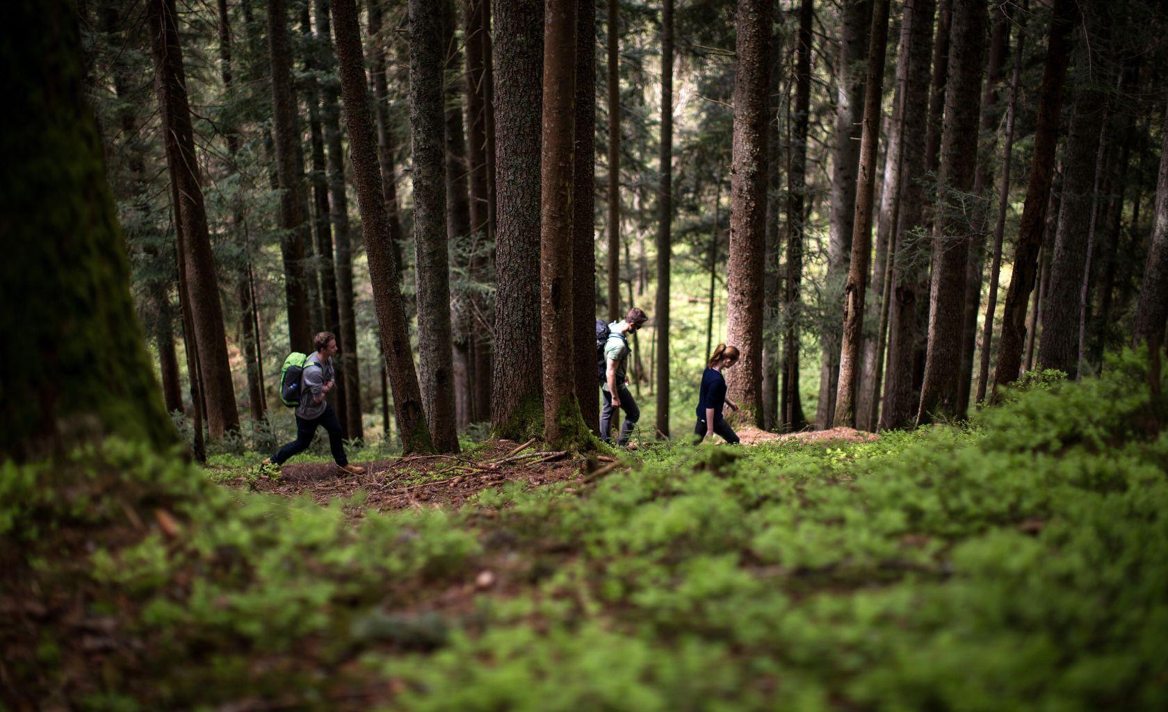 Einfach wandern – Saalfelden Leogang